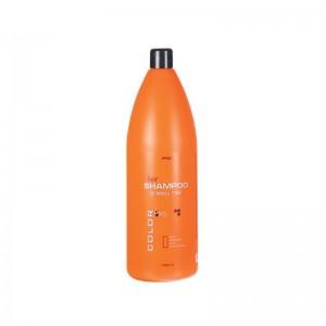 COLOR PRO Shampoo Greasy...